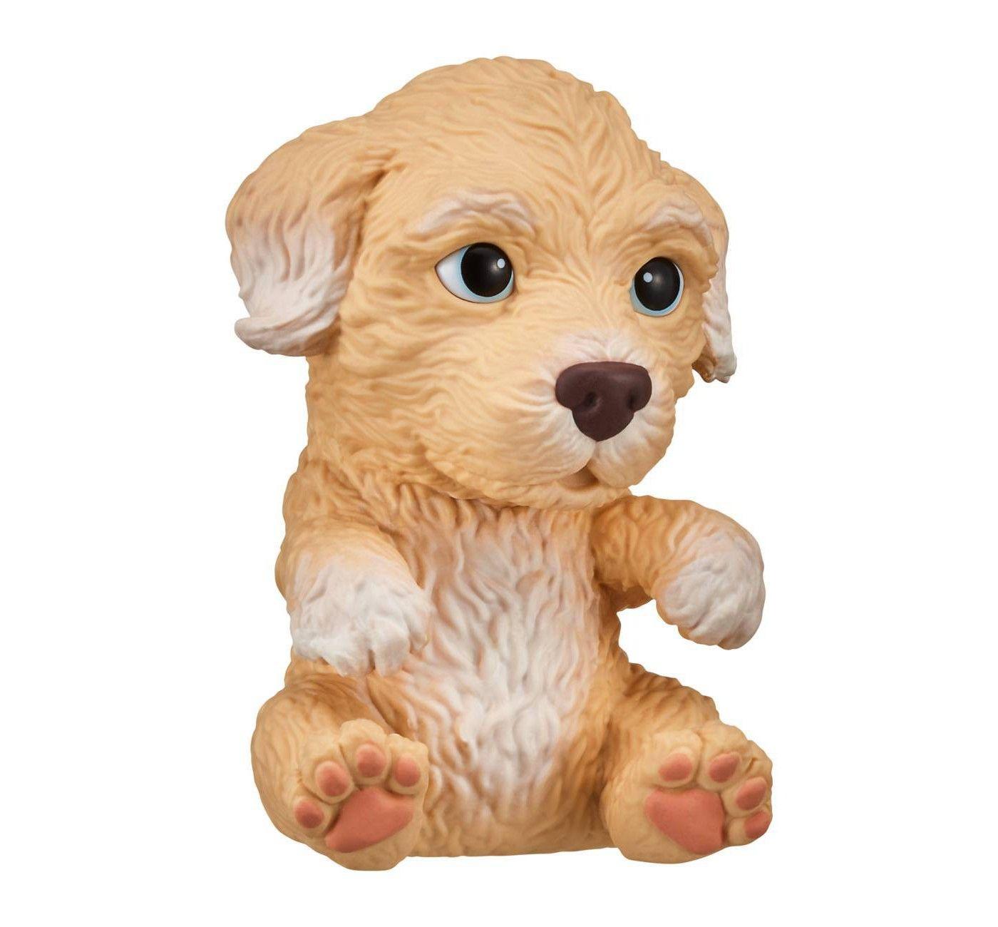 Affiliate Ad Poodle Puppy Little Live Pets Cute Little Puppies