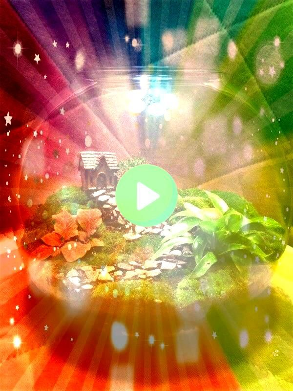 I built today Message if interested  Gardening Sustainanniversary terrarium I built today Message if interested  Gardening Sustain Want to know how to plant a terrarium H...