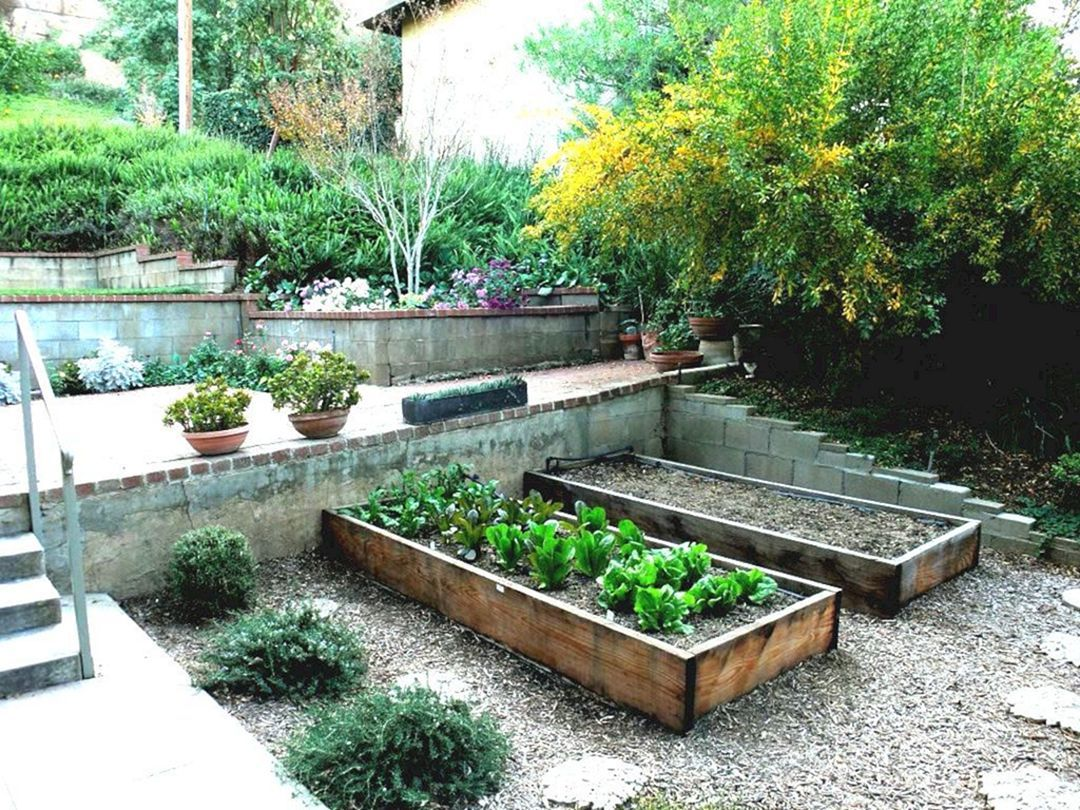 Top 10 Inspiration For Vegetable Garden Ideas You Need To