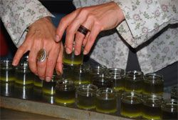 Herbal School: Make a summer herbal salve for bites, stings and scrapes - Lesley Tierra's Blogs - Planet Herbs