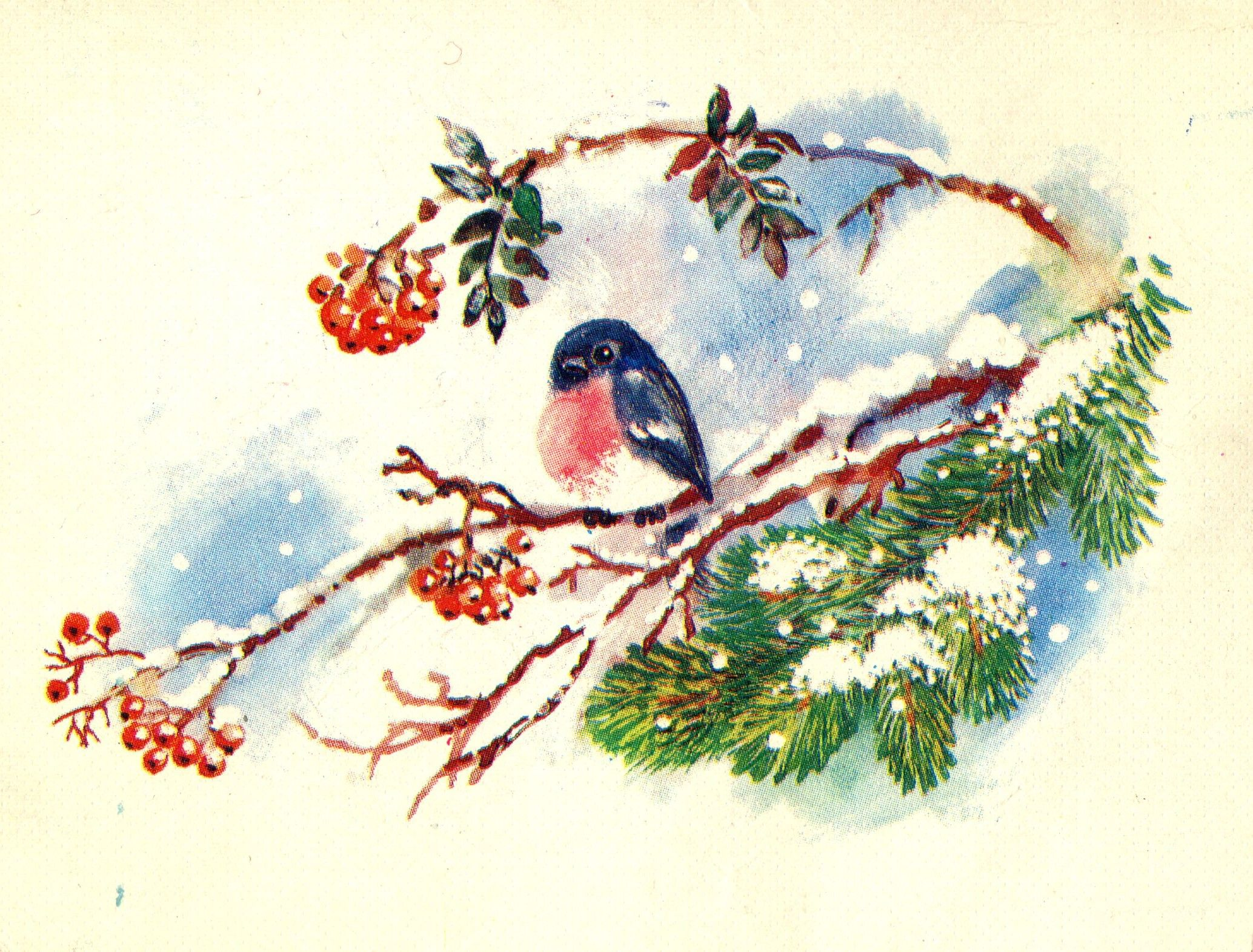 снегурочка в санях со снегирями картинки