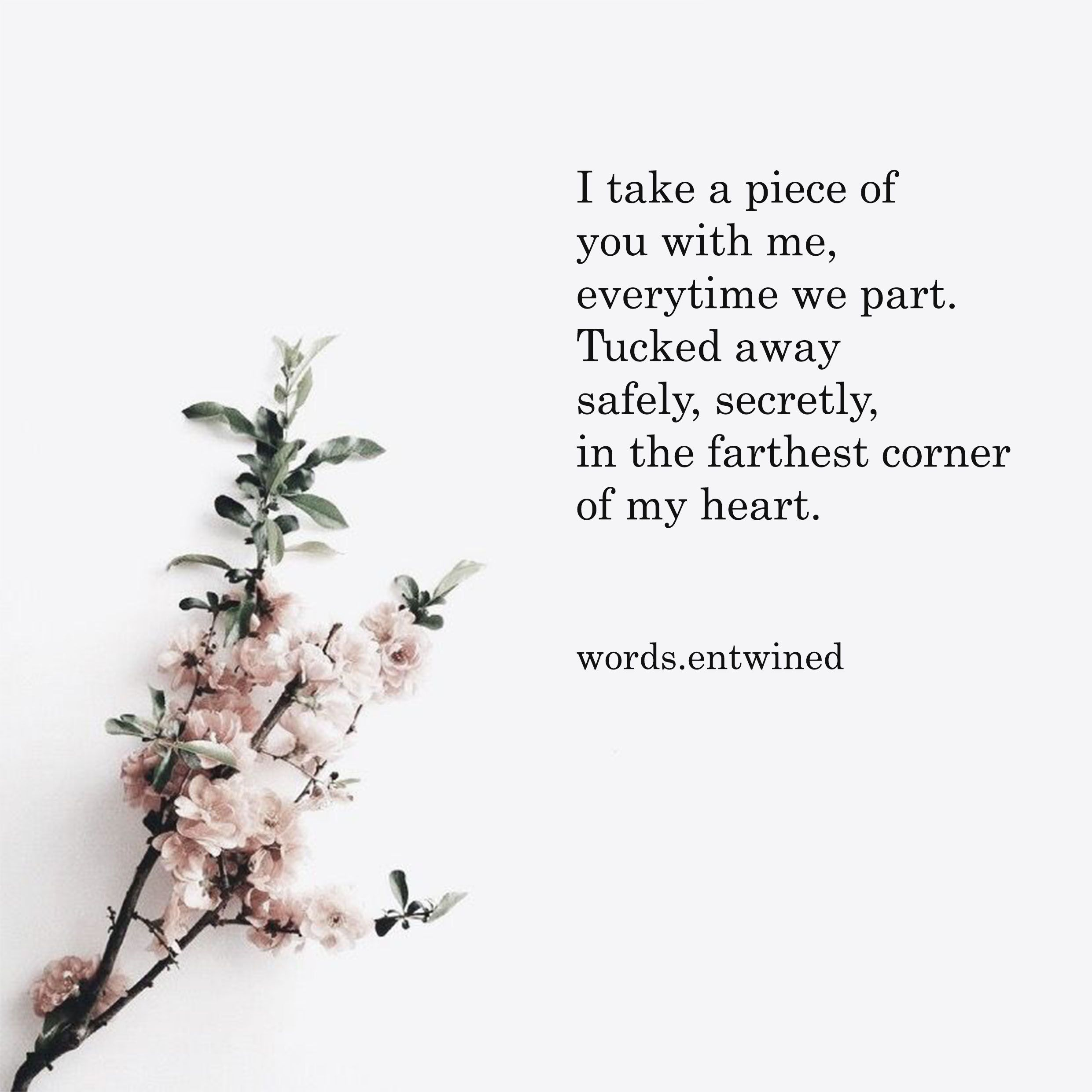 Follow @words.entwined On Instagram For Daily Poetry #poem #poetry #poems