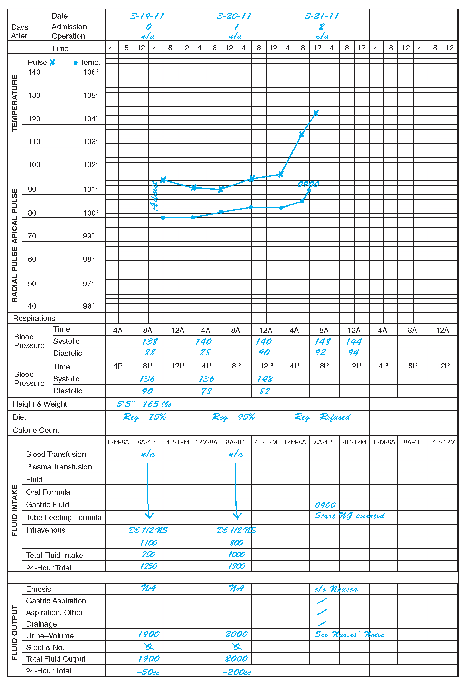 graphic flow sheet nursing