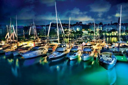 nexus dock and marina
