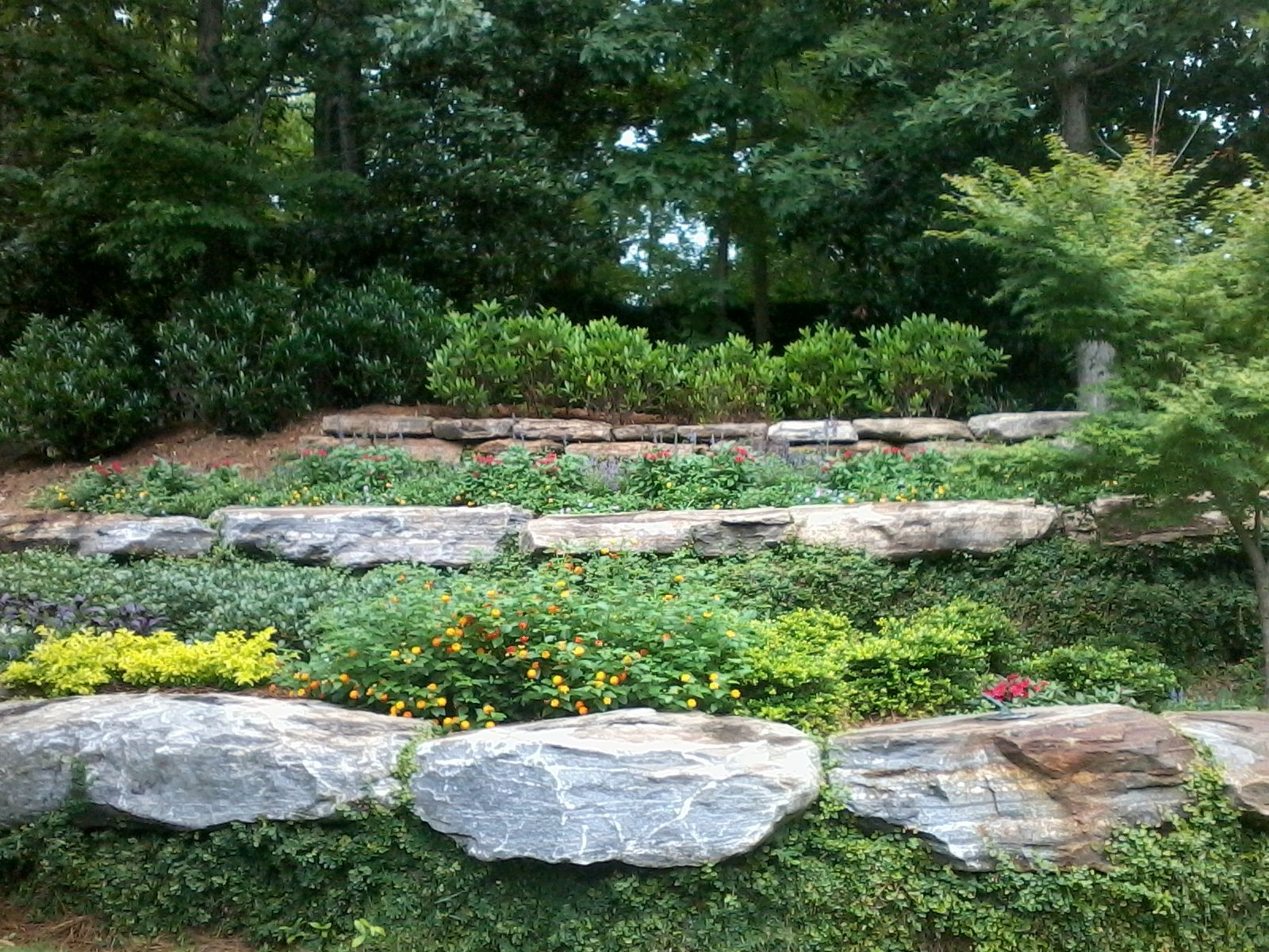 Tiered garden | Backyard landscaping, Tiered garden ... on Tiered Yard Ideas  id=59227