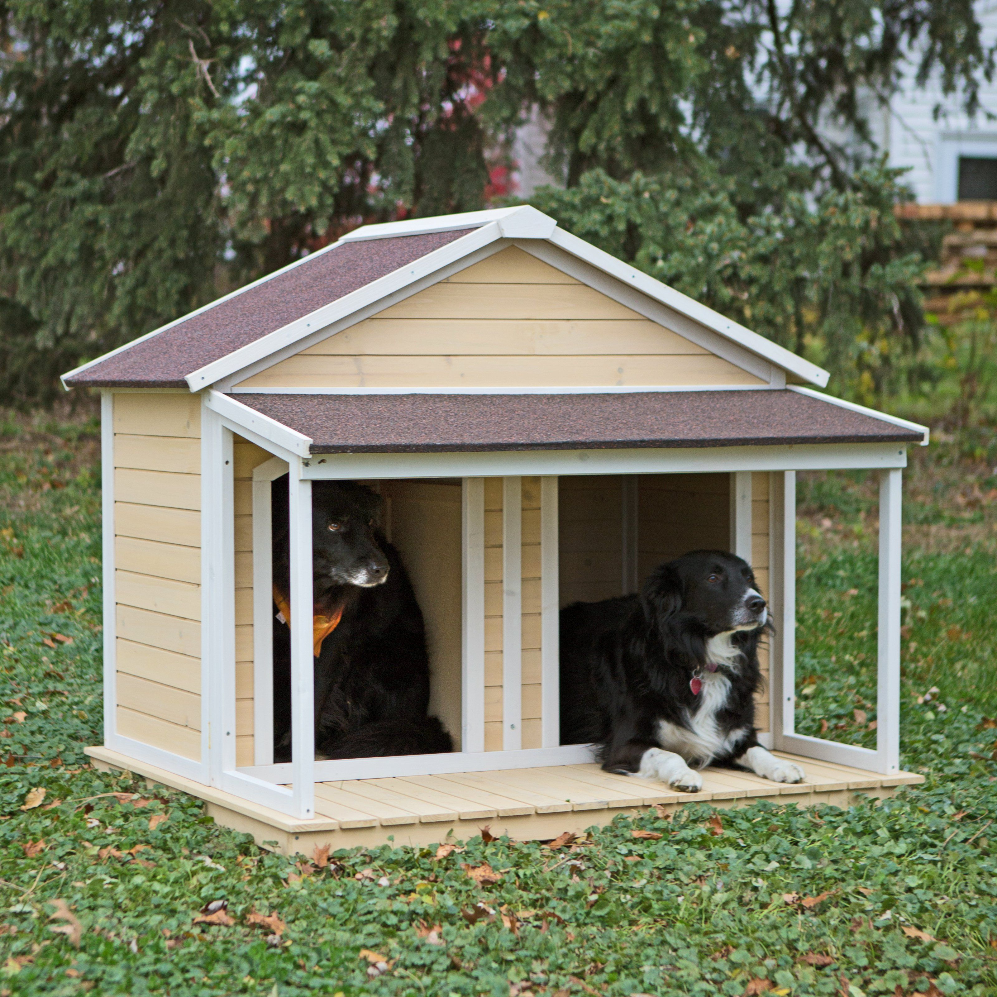 Boomer George Duplex Dog House Antique White Wash