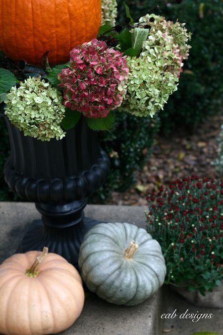 Hydrangeas & pumpkins