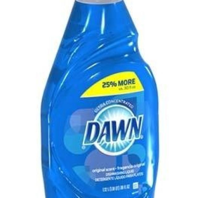 Put Dawn And Water In A Spray Bottle And Spray Carpets Furniture
