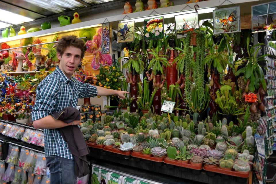 Amsterdam et le marché des fleurs aux mille et unes couleurs.