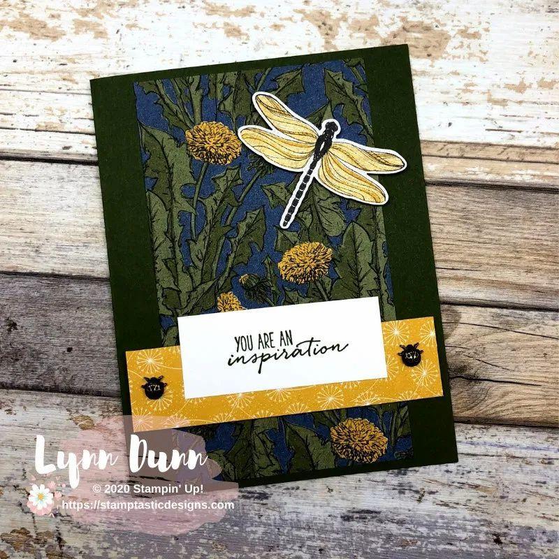 Dragonfly Garden Bundle - NEW Catalog Sneak Peek  