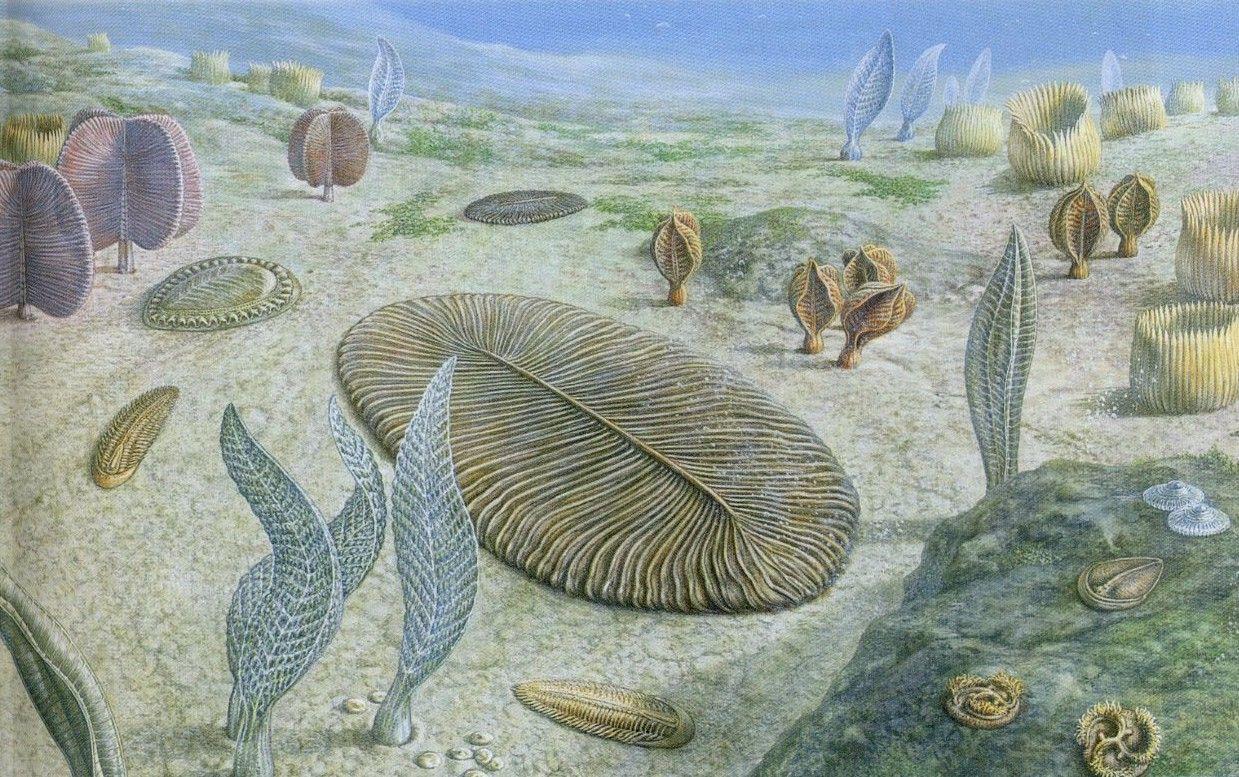 культурная картинки с древними животными и растениями артиста