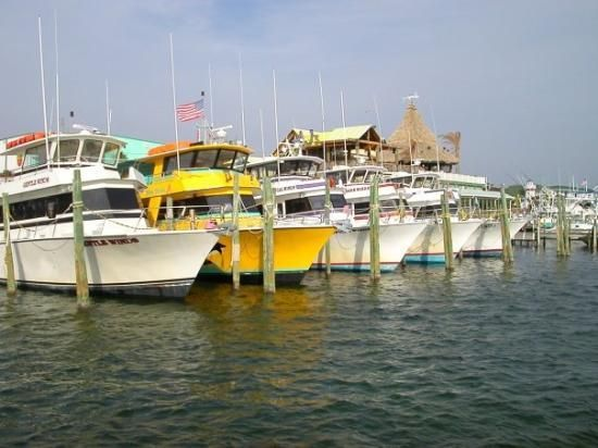 Worlds luckiest fishing village awesome deep sea fishing for Destin deep sea fishing
