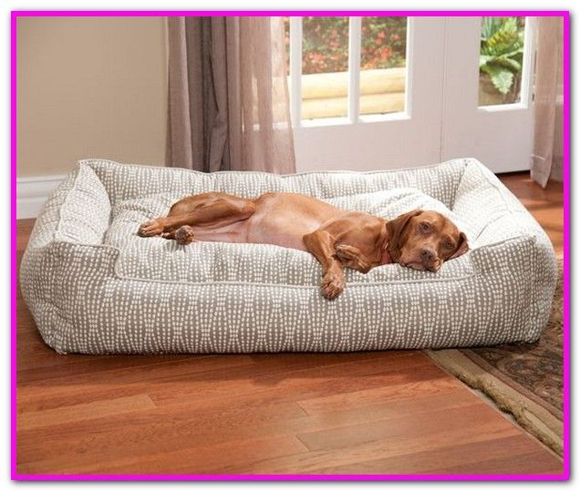 Target Black Friday Dog Beds Shop Target For Dog Beds You Will Love At Great Low Prices Spend 35 Or Use Your Redcard Cozy Dog Bed Cozy Dog Custom Dog Beds