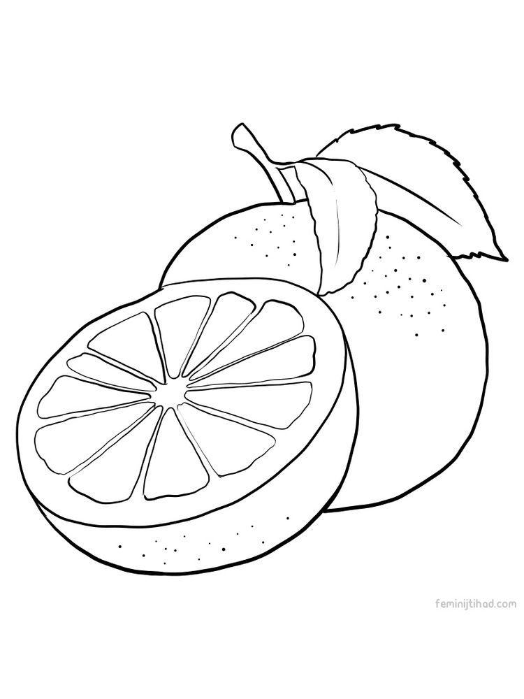 Grapefruit Images For Coloring Em 2020 Arte Para Criancas