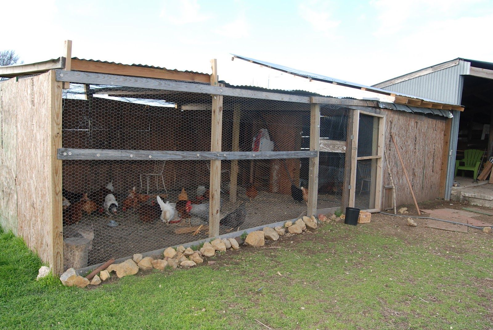 We Have A Nice Chicken Coop For Our Chickens About 300 Square Feet Chicken Coop Coops Farm Restaurant
