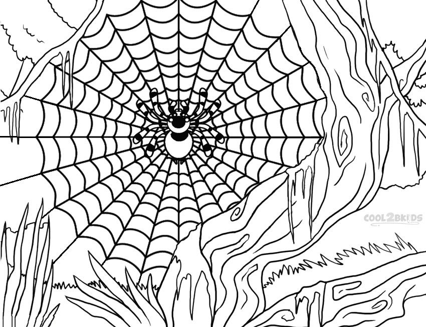 spider web coloring page # 13