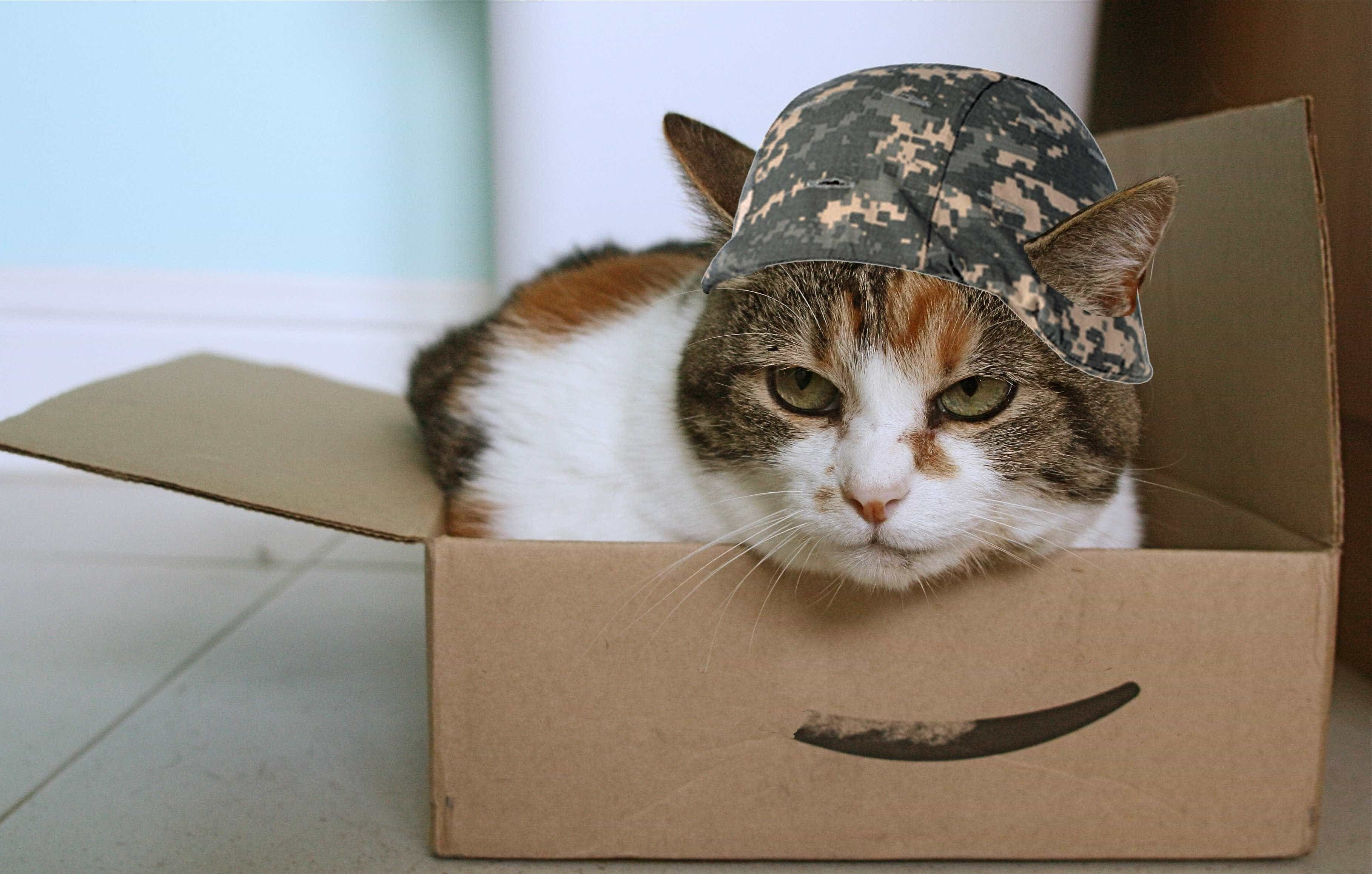 how old to work at amazon prime