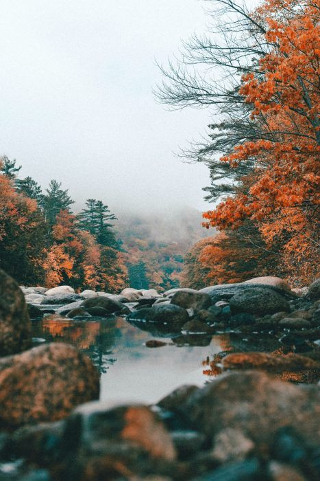 14 Fall Road Trip Ideas In The United States #fallbeauty