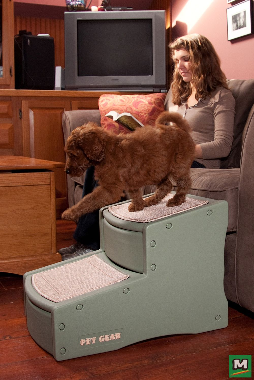 With Pet Gear Easy Step II, your older pet easily reaches