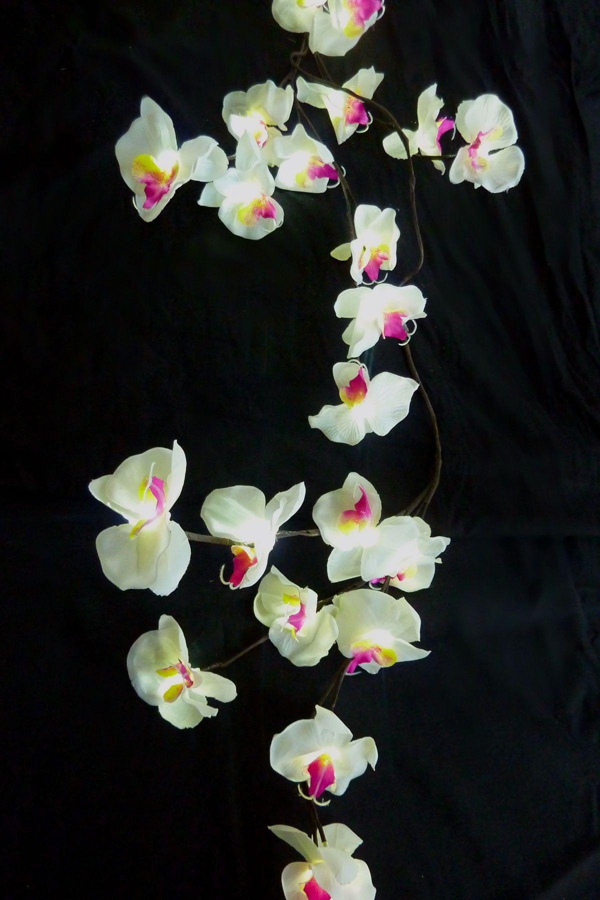 Led Flower Lights Housey Stuff Pinterest Flower Lights Lights