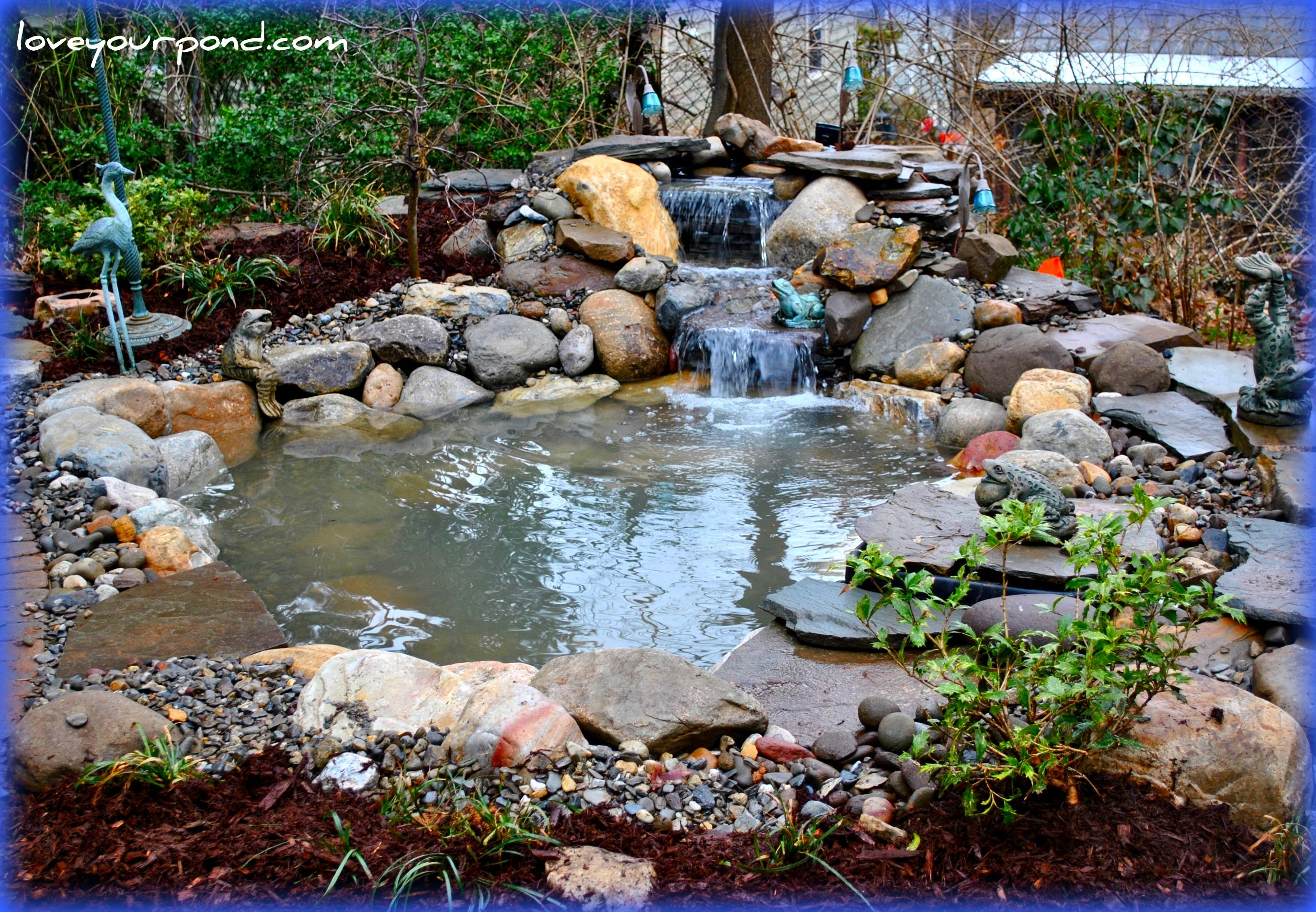 Small pond installation designed and installed by full for Fish pond installation
