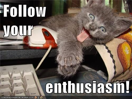 Funny Friday Night Meme : Growth mindset memes: english: follow your enthusiasm! growth