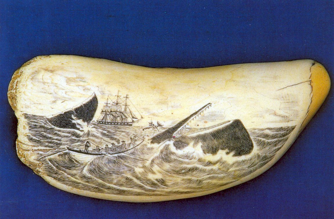SCRIMSHAW IMAGES | Scrimshaw. Here, an image of a whale hunt carved on a successfully ... | Scrimshaw, Scrimshaw art, Whale