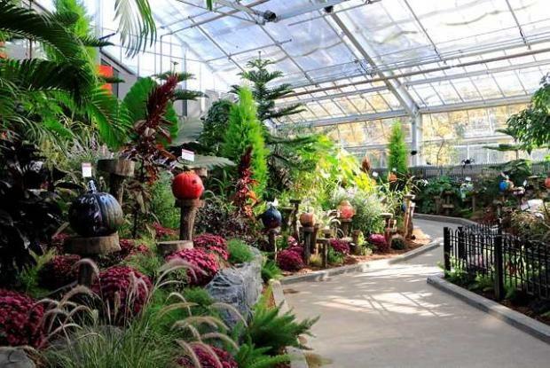 Grande Serre D Exposition Espace Pour La Vie Jardin Botanique De