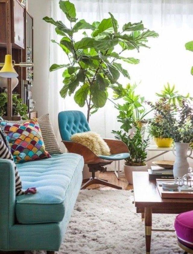 Pin de Kari en home Pinterest Plantas - decoracion de interiores con plantas