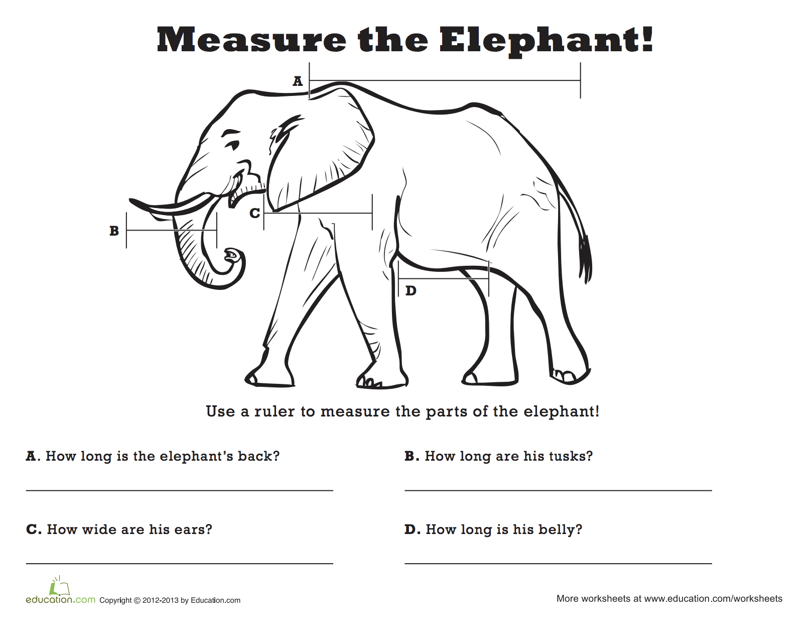 Measure The Elephant With Images