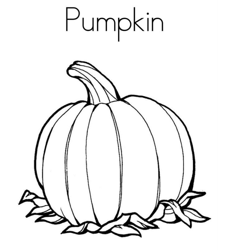 Free Pumpkin Coloring Pages For Kids Pumpkin Coloring Pages