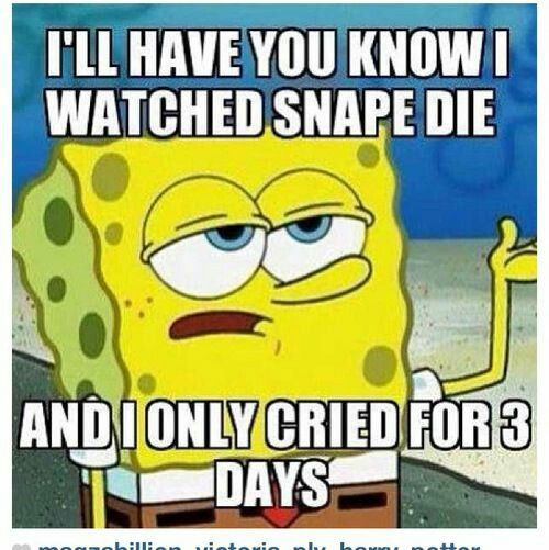 Hahahaha But Seriously I Could Say The Same Thing For Sirius Fred Dobby Dumbledore Lupin Tonks Mad Eye Colin Lavend Funny Memes Spongebob Memes Funny