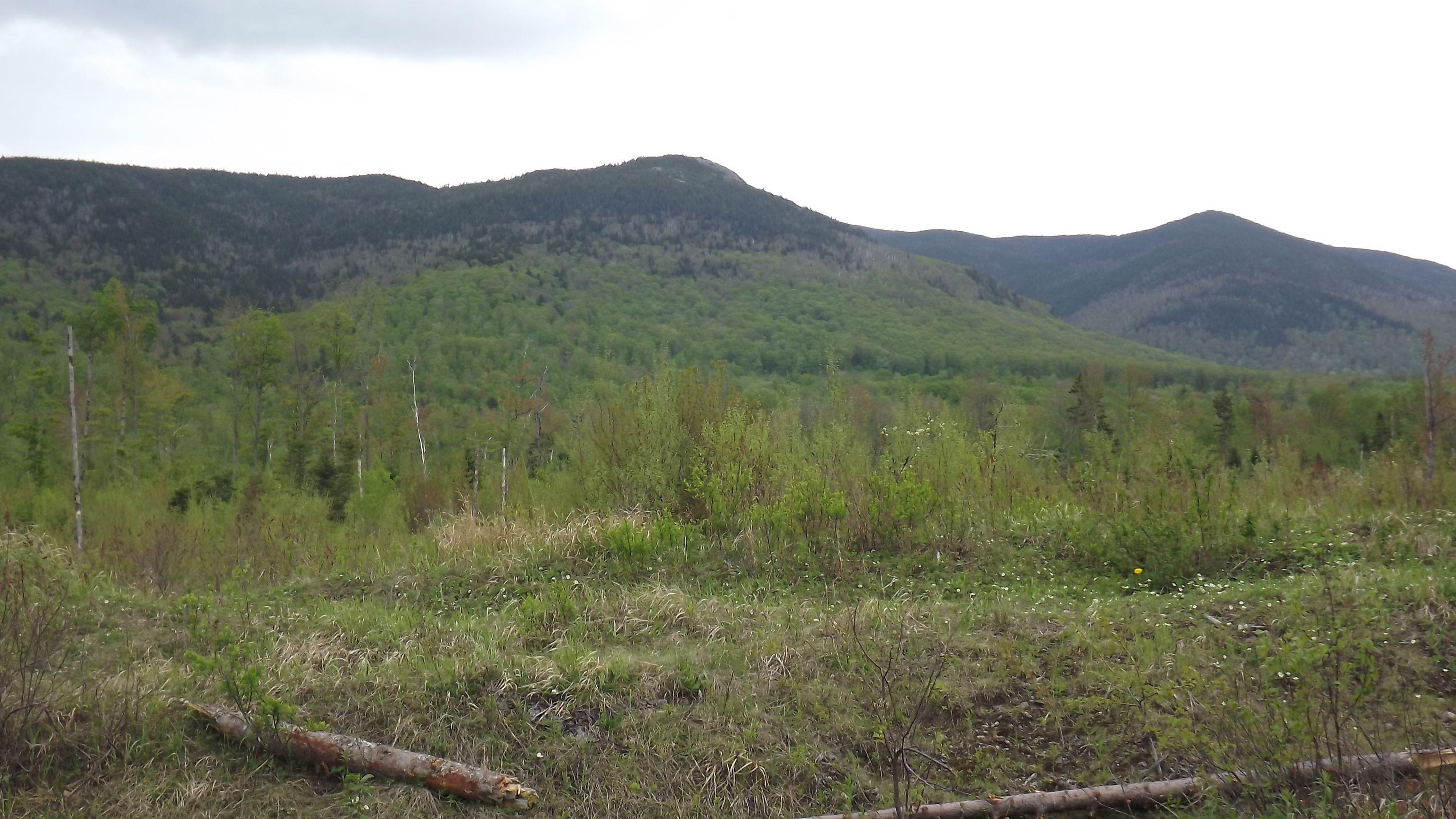 Success Mt  New Hampshire May 2013
