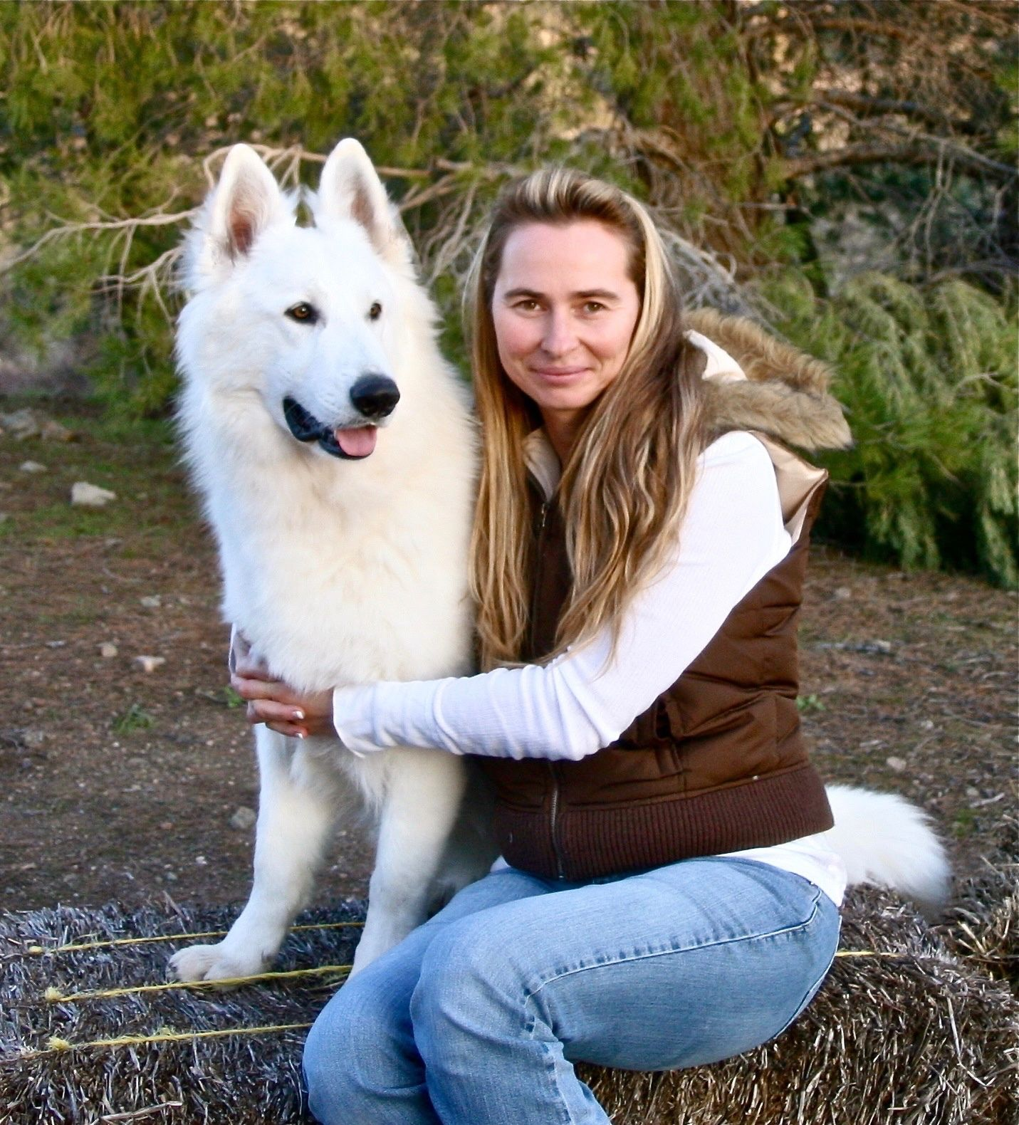 Dances With Wolves Ranch whiteswissshepherd