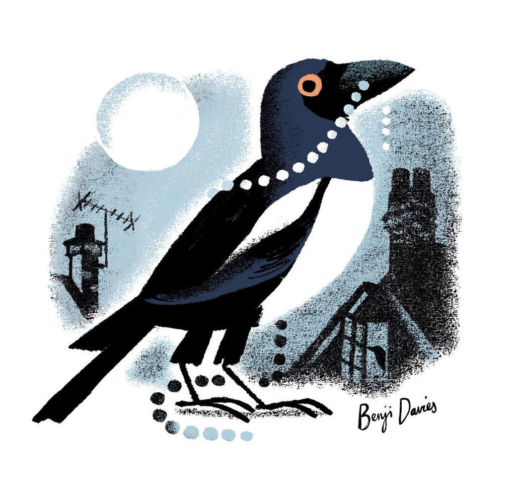 Magpie That | illustrated books, picture books, graphic novels