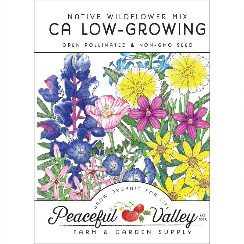 California Low-Growing Native Wildflower Mix (pack