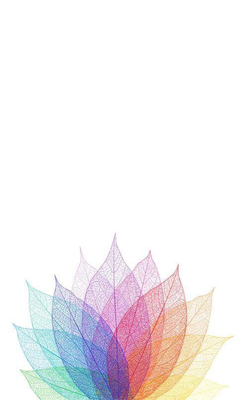 IPhone Wallpaper Iphone Lotus Flower Simple Phone Wallpapers Minimalist