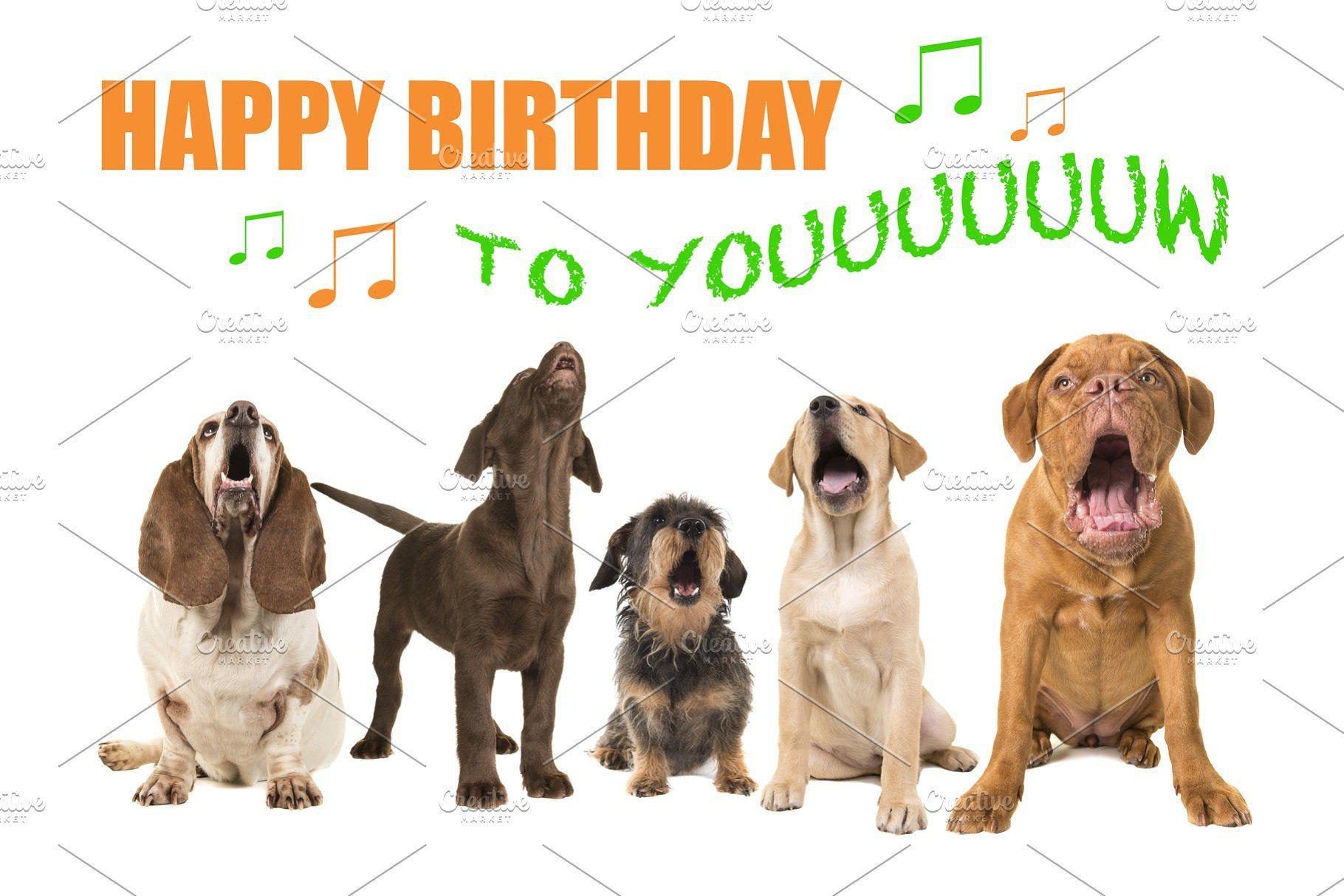 Dogs Singing Happy Birthday Containing Animal Pet And Dog Happy Birthday Dog Happy Birthday Animals Dog Birthday Wishes
