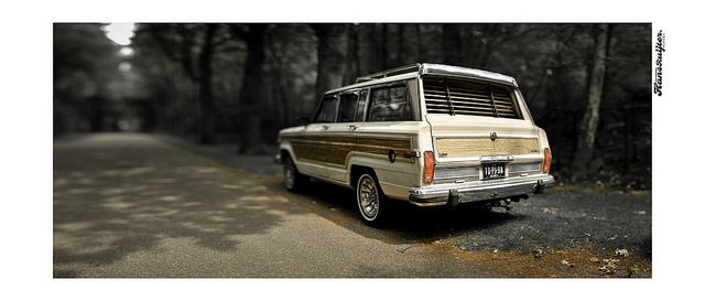Nice picture. Classic Wagoneer.