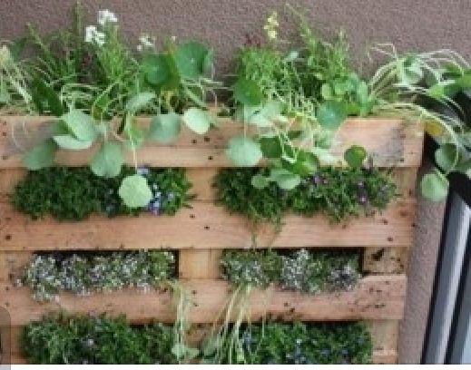 Beau Pallet Hanging Herb Garden