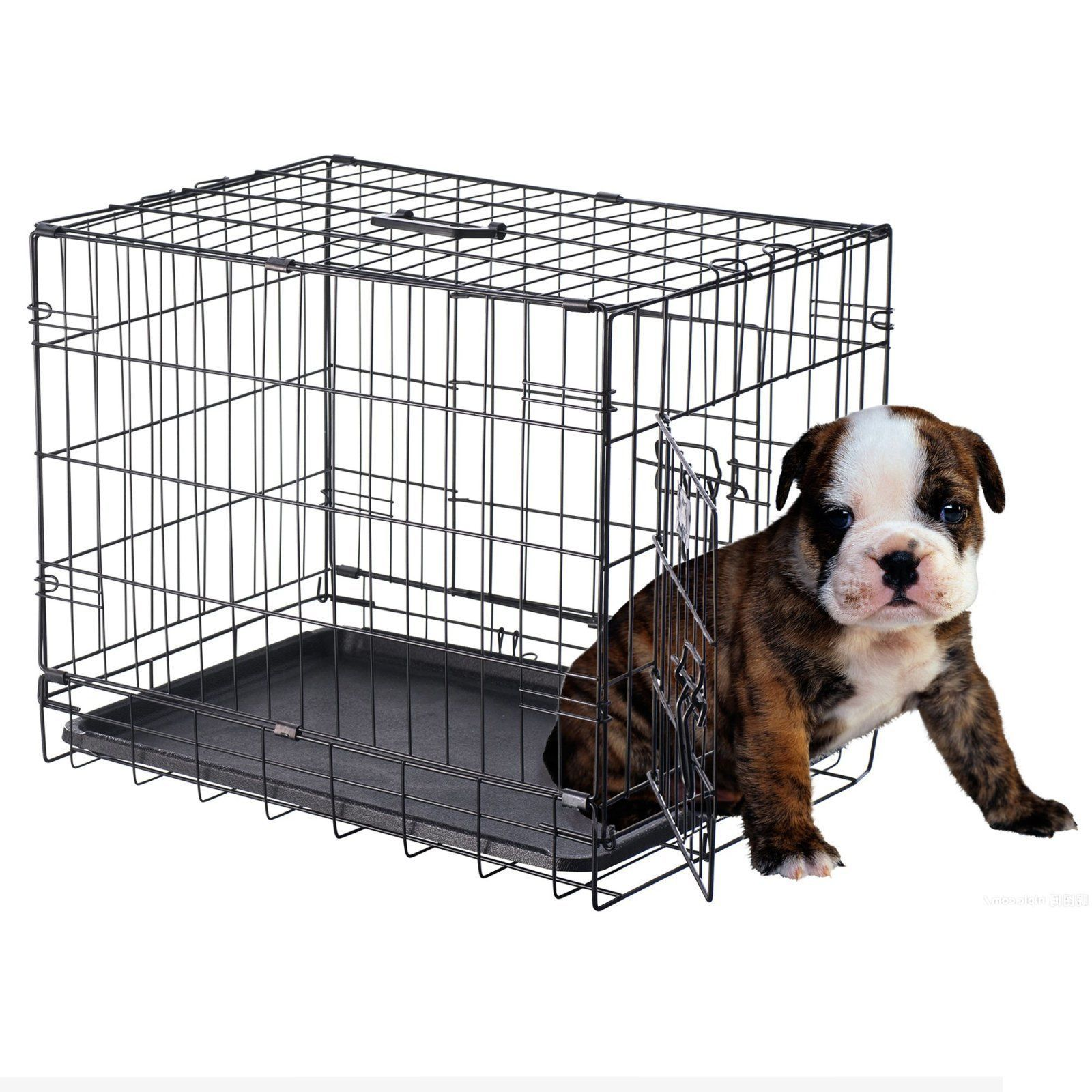 pet trex 24 inch pet crate folding pet crate kennel for dogs cats or rabbits 24 pet supplies near me