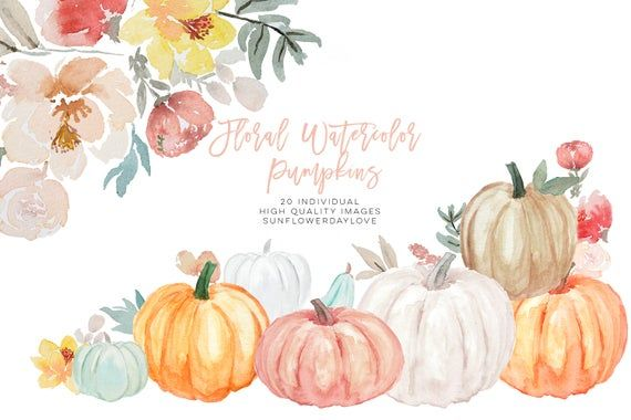 Pumpkin and Floral Watercolor fall clipart, Harvest illustration, Autumn, Thanksgiving, White, Yello
