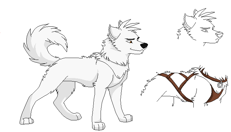 Wolf Base 6 Wolf Base Wolf Sketch Anime Wolf