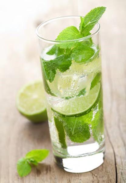 Mint D Mojito 195 200 Calories 1 5 Oz Light Rum 105 Calories 0 5 Oz Peppermint Schnapps 40 Calories 0 5 Oz Lemon Vodka 200 Kalorien Mojito Minze Mojito