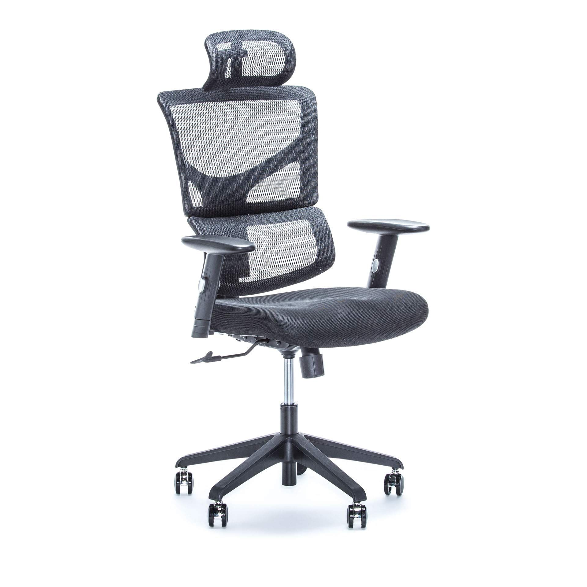 X Chair X1 Black Ergonomic Adjustable Office Chair With Headrest And Lumbar Support Heavy Duty Rolling Wheels Breat In 2020 Office Desk Chair Computer Chair Chair