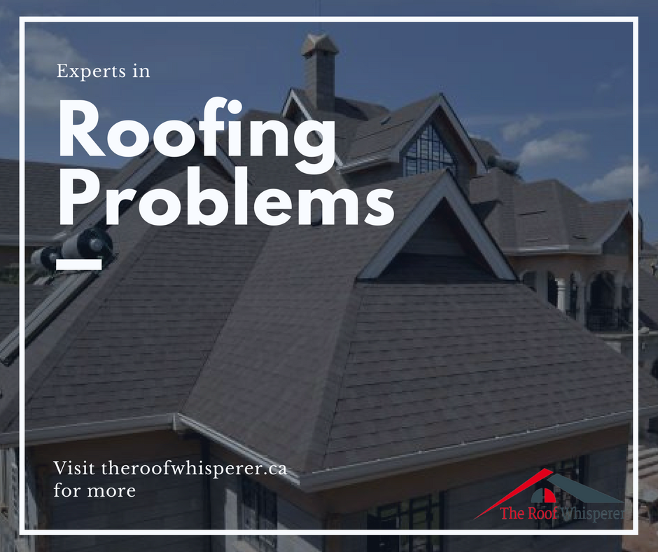 All Canadian Residents Are Welcome To Avail Of Our Roofrepair Toronto Services Anytime That They Feel That Their R Roof Repair Roof Problems Gutter Repair