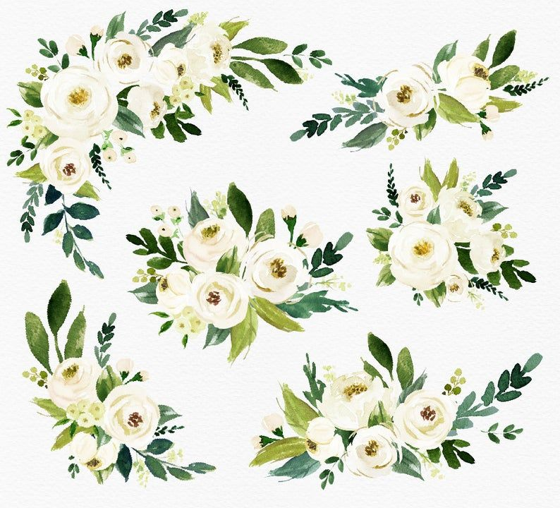 White Flower Small Set Individual Png Files Hand Painted Wedding Design Bohemian Rustic White Flower Png Watercolor Wedding Invitations Green Watercolor Flower Wreath
