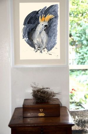 hardtofind. | Cockatoo giclee print