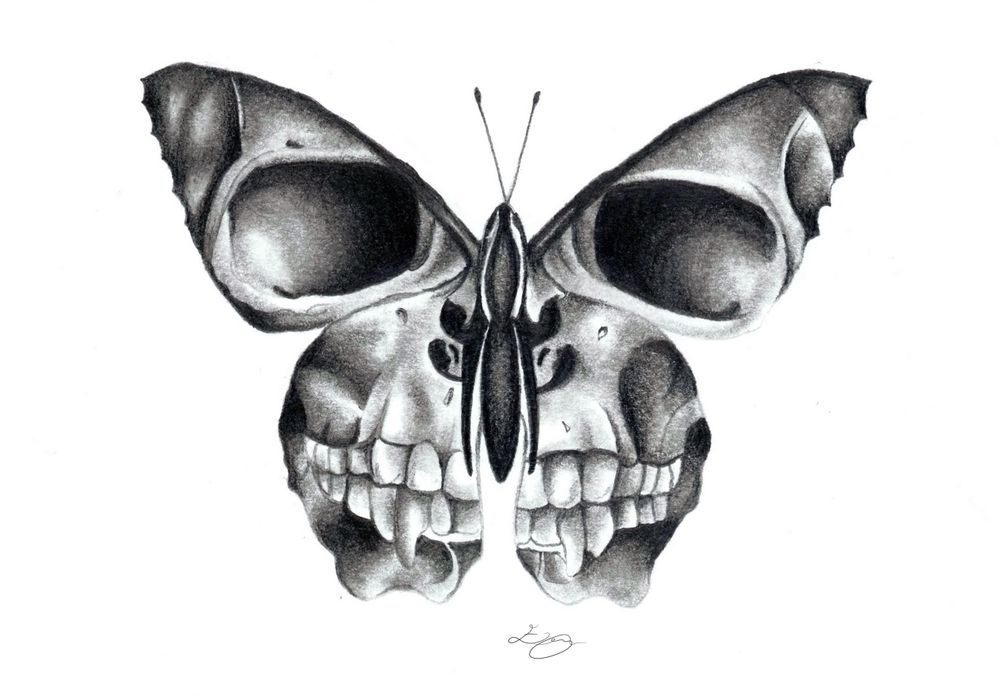 Photo of butterfly skull Art Print by erzaguri