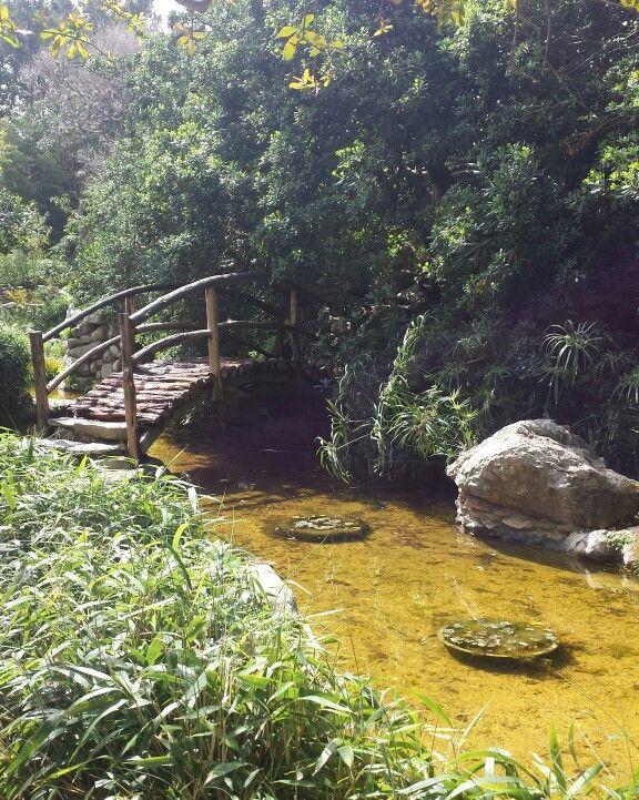 Zilkner Botanical Garden Photo By S Croteau Austin